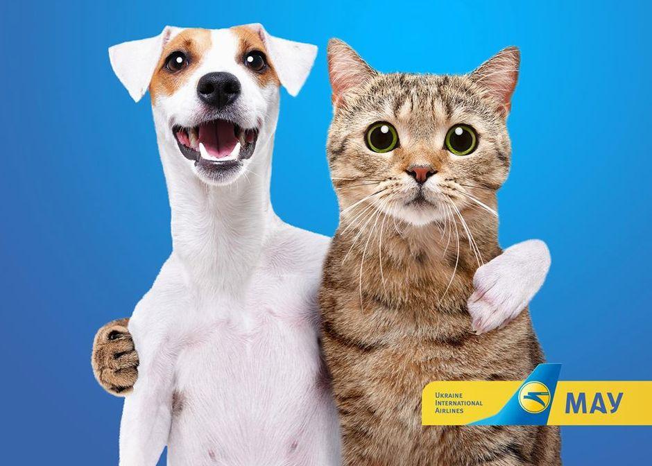Авіакомпанія МАУ піклується про тварин та їх господарів